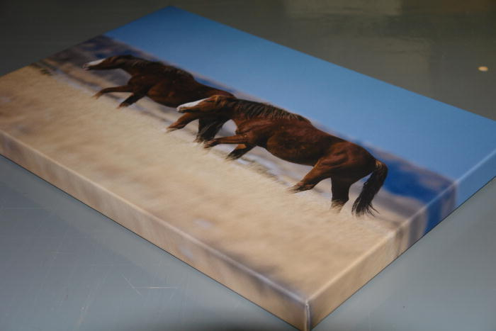 mounted print vs canvas print arts arts